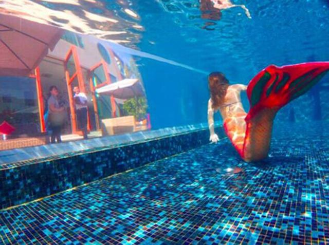 壁纸 海底 海底世界 海洋馆 水族馆 640_477