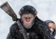 《猩球崛起3》:人类与猩猩的生存之战