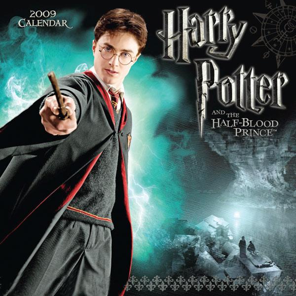 哈利波特 魔法师 长大成人