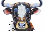 牛年说牛:趣谈中国文化中的牛